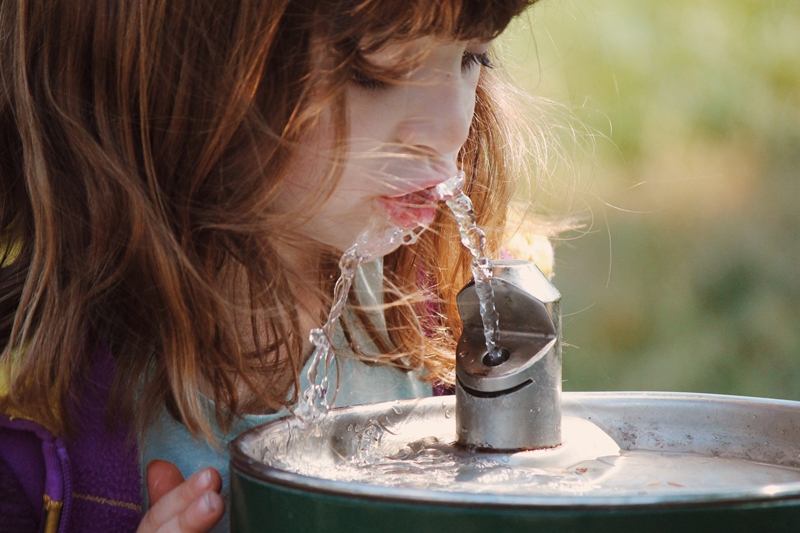 Elementary school student drinks from a water fountain.